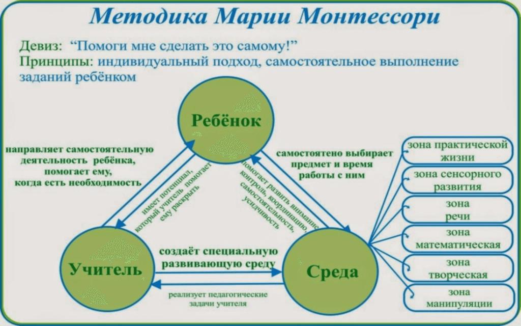 Монтессори Инфографика